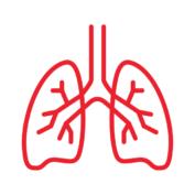 pneumologia-52